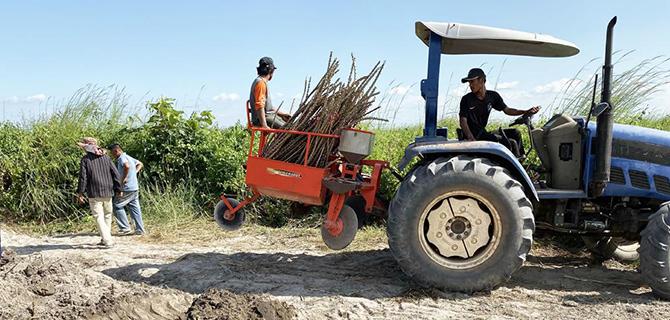 柬埔寨土地流转投资